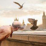 """Brytyjskie media doceniły polskie miasto: """"To jedno z najfajniejszych miejsc w Europie"""""""