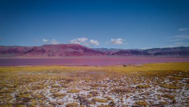 Argentyna - La Puna - co warto zobaczyć?